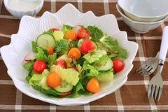 Salada fresca do jardim na bacia branca Fotos de Stock