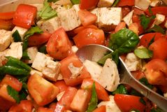 Salada fresca do tomate Fotografia de Stock Royalty Free