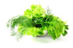 Salada fresca, salsa, aneto no fundo branco Foto de Stock