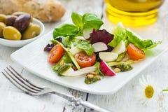 Salada frondosa Imagem de Stock