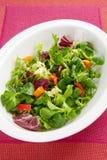 Salada frondosa friável na bacia Fotografia de Stock Royalty Free