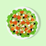 Salada grega fresca na placa branca grande, vista superior O tomate, pimenta doce, cebola, verdes, queijo, azeitonas, pepino, mis Fotos de Stock Royalty Free