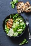 Salada grelhada da galinha, do abacate, do pepino e da alface - saudável, bacia equilibrada do alimento no fundo escuro Fotografia de Stock Royalty Free