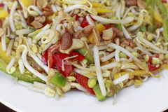 Salada indiana tradicional Fotos de Stock Royalty Free