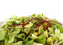 Salada isolada Fotografia de Stock Royalty Free