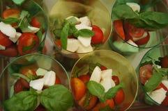 Salada italiana Fotografia de Stock Royalty Free