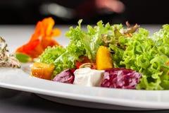 Salada italiana europeia da alface, dos tomates de cereja, da abóbora, de flores comestíveis da abóbora, e de sementes de abóbora fotos de stock