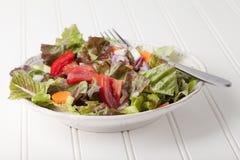 Salada italiana orgânica no branco Fotos de Stock