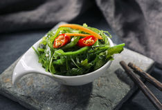 Salada japonesa da alga Foto de Stock Royalty Free