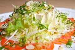 Salada japonesa do Tofu Fotografia de Stock Royalty Free