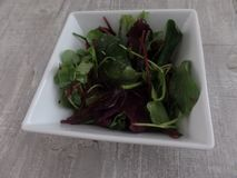 Salada misturada da folha do bebê em uma bacia imagens de stock royalty free