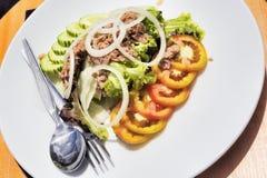 Salada misturada do atum tailandês - foco seletivo Fotografia de Stock