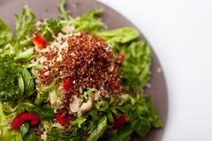 Salada misturada do Quinoa Fotos de Stock Royalty Free