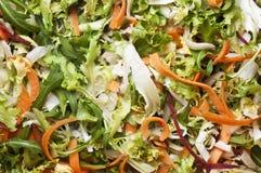 Salada misturada fresca Foto de Stock