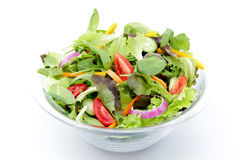 Salada misturada no fundo branco imagem de stock royalty free