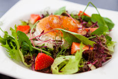 Salada morna do queijo de cabra Fotos de Stock Royalty Free