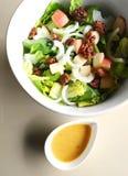 Salada na bacia com pingamento Imagens de Stock
