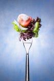Salada na forquilha imagens de stock
