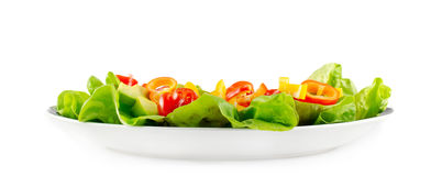 Salada na placa branca Fotografia de Stock