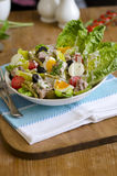 Salada Nicoise Foto de Stock Royalty Free