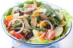 Salada Nicoise fotografia de stock royalty free