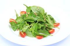 Salada no prato branco Fotografia de Stock
