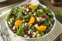 Salada orgânica crua da acelga do inverno com laranjas imagem de stock royalty free