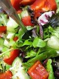 Salada orgânica saudável Fotografia de Stock Royalty Free