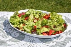 Salada para o almoço imagem de stock royalty free