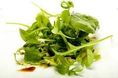 Salada pequena da erva. Fotografia de Stock