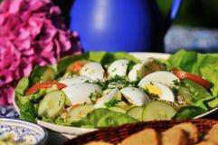 Salada saboroso foto de stock