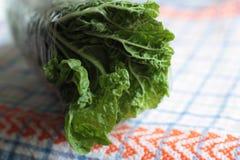 Salada saboroso e saudável imagens de stock