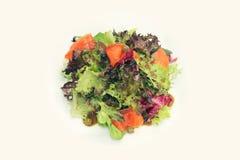 Salada Salmon com molho de alcaparra Imagens de Stock Royalty Free