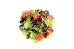 Salada Salmon com molho de alcaparra Imagens de Stock