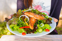 Salada salmon Seared Fotos de Stock Royalty Free