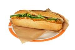 Salada satay da galinha. Fotografia de Stock