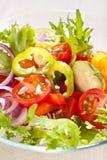 Salada saudável foto de stock royalty free