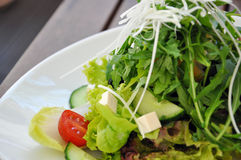 Salada saudável fotografia de stock
