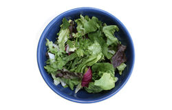 Salada saudável Imagens de Stock
