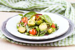 Salada saudável com couves de Bruxelas couve, tomates, salada Imagens de Stock