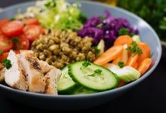 Salada saudável com galinha, tomates, pepino, alface, cenoura, aipo, couve vermelha e feijão de mung Imagem de Stock Royalty Free