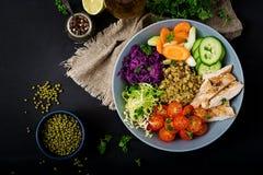Salada saudável com galinha, tomates, pepino, alface, cenoura, aipo, couve vermelha e feijão de mung Imagem de Stock