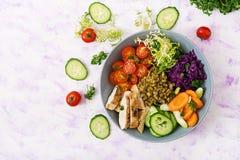 Salada saudável com galinha, tomates, pepino, alface, cenoura, aipo, couve vermelha e feijão de mung no fundo claro Foto de Stock Royalty Free