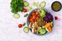 Salada saudável com galinha, tomates, pepino, alface, cenoura, aipo, couve vermelha e feijão de mung no fundo claro Fotos de Stock Royalty Free