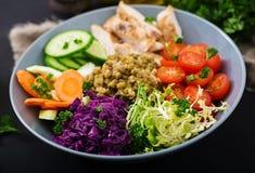 Salada saudável com galinha, tomates, pepino, alface, cenoura, aipo, couve vermelha e feijão de mung no fundo claro Fotografia de Stock Royalty Free