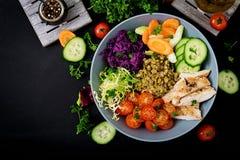 Salada saudável com galinha, tomates, pepino, alface, cenoura, aipo, couve vermelha e feijão de mung no fundo escuro Imagem de Stock