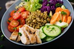 Salada saudável com galinha, tomates, pepino, alface, cenoura, aipo, couve vermelha e feijão de mung no fundo escuro Fotografia de Stock