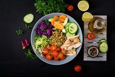 Salada saudável com galinha, tomates, pepino, alface, cenoura, aipo, couve vermelha e feijão de mung no fundo escuro Imagem de Stock Royalty Free