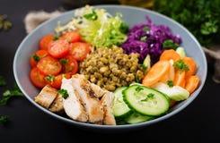 Salada saudável com galinha, tomates, pepino, alface, cenoura, aipo, couve vermelha e feijão de mung no fundo escuro Foto de Stock Royalty Free