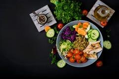 Salada saudável com galinha, tomates, pepino, alface, cenoura, aipo, couve vermelha e feijão de mung no fundo escuro Imagens de Stock